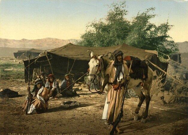 кочевники-бедуины