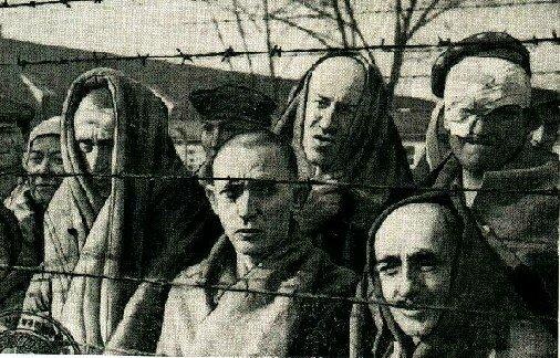 заключенные в Освенциме