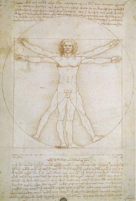 Л. да Винчи Пропорции человека по Витрувию (Витрувианский человек), 1490 г. Галерея дел'Академия, Венеция, Италия
